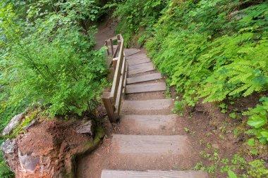 Footbridge to Wahclella Falls in Oregon