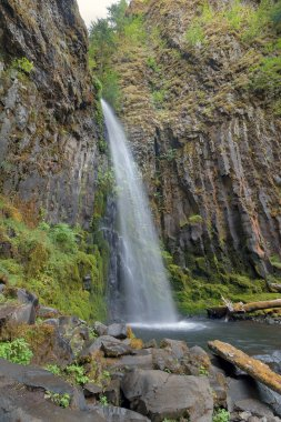 Dry Creek Falls in Columbia River Gorge Vertical