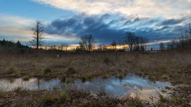 Časová prodleva Západu s vodní odraz v Foster lužní přírodní oblasti v Portlandu Oregon jednoho zimního večera