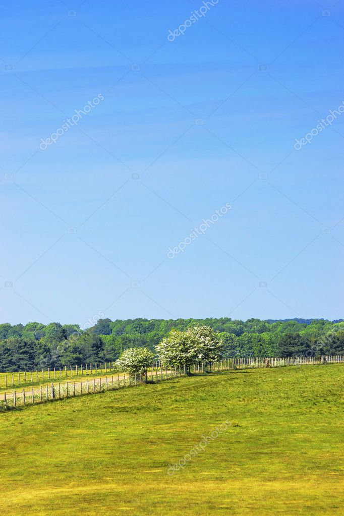Countryside near Stonehenge in Wiltshire in UK