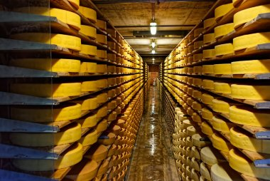 Round stacks of cheese curing in a cellar of Maison du Gruyere c