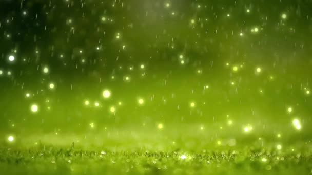 Nature background. Beautiful Blurred abstract bokeh with rain drop on grass. Sunlight. Sunflare. Slow motion
