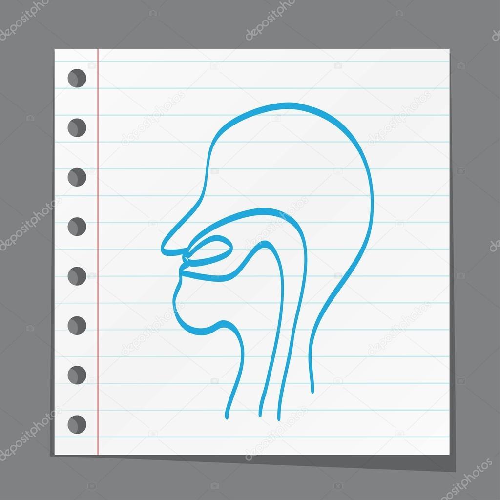 Cartoon-Hals, Nase, Rachen — Stockvektor © slasny1988 #77204517
