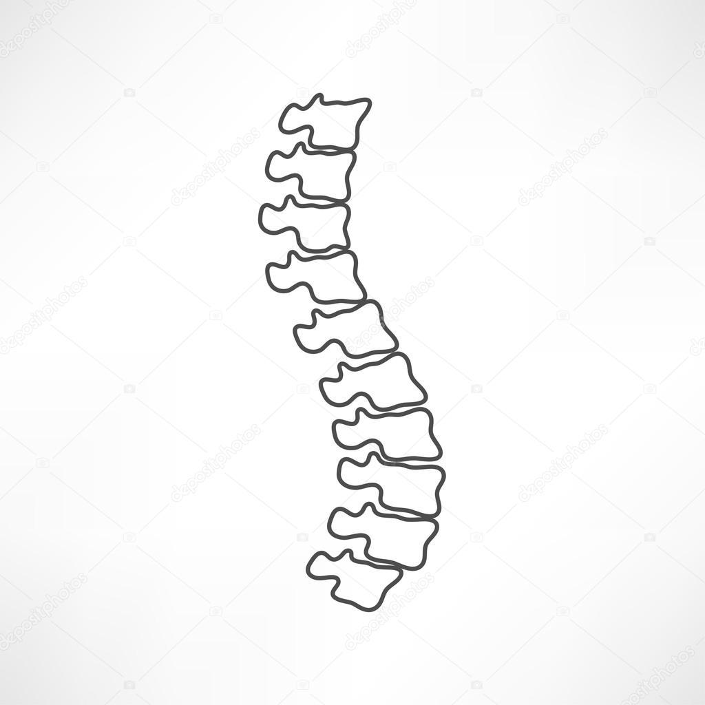 Symbol der Wirbelsäule-Diagnose, Medizin — Stockvektor © slasny1988 ...