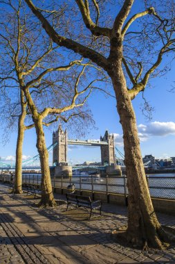 View of Tower Bridge along the Thames Path in London