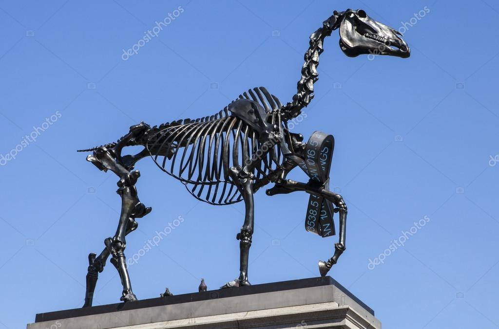 4 a horse skeleton sculpture on the fourth plinth in trafalgar square in london the installation is by german artist hans haacke is entitled gift horse negle Choice Image
