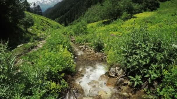 Horský potok v Gruzii