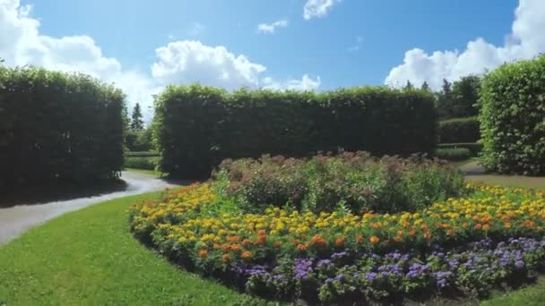 Maze among the bushes and Flower bed
