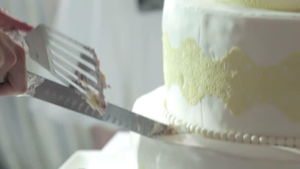 Cuting beautiful cake