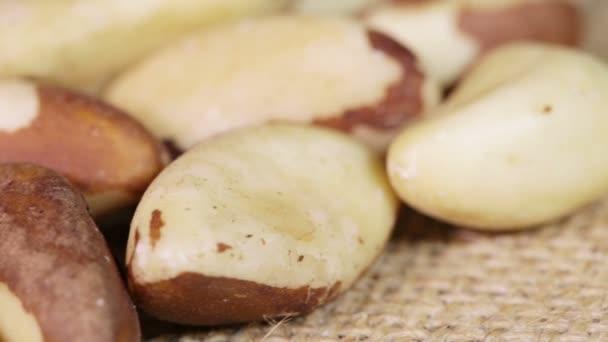 Macro Brazil nut