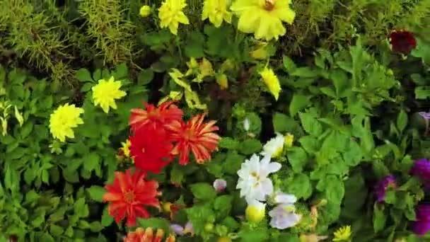 Virágoskert a Városligetben