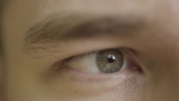 Makro-Nahaufnahme Mann grau und blaues Auge sieht nervös. Handeln. Mann mit geöffnetem Auge, Details des menschlichen Gesichts mit Wimpern, Augenlid und Augenbraue.