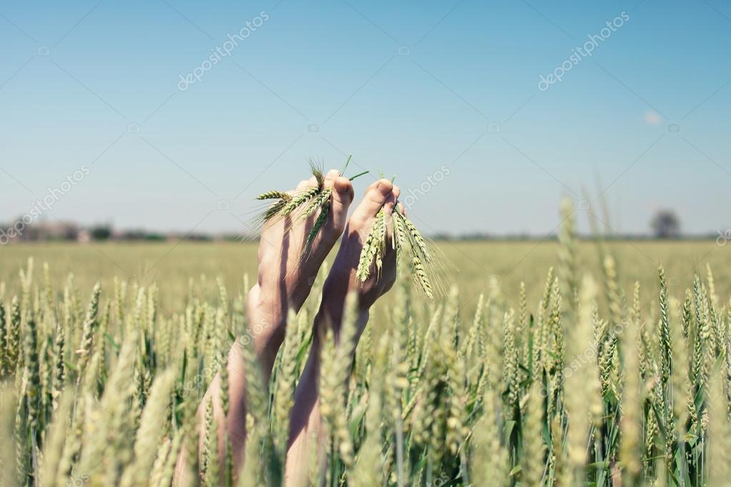 Feet in wheat