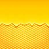 Fotografie Honeycomb and sweet honey drips