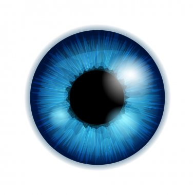 Human eye iris pupil - blue color.