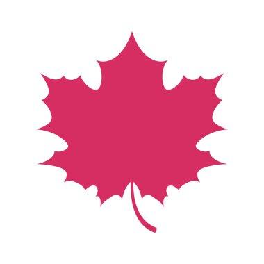 Simple flat maple leaf symbol logo fall autumn design.