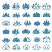 Fotografie Lotosový květ míchaný ikony nastavit