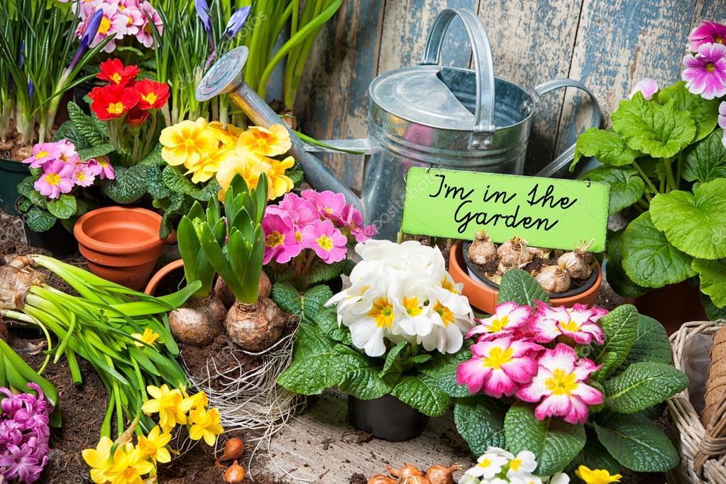 Ich Bin Im Garten Zeichen Stockfoto Alexraths 65388157