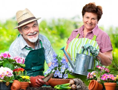 Senior couple in the flower garden