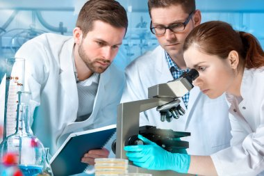 Group of scientists working at the laboratory stock vector