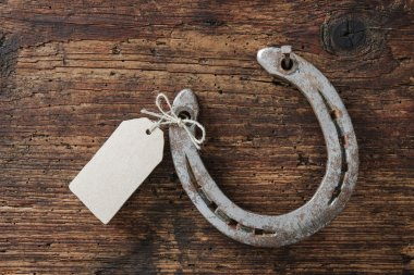 Horseshoe with an empty tag