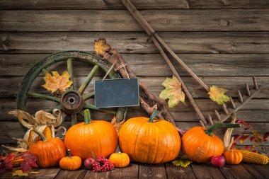Thanksgiving autumnal still life with pumpkins