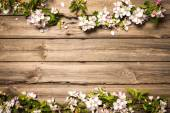 Fotografie Apple blossoms on wooden surface