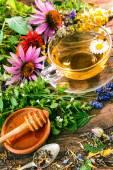 bylinkový čaj s medem
