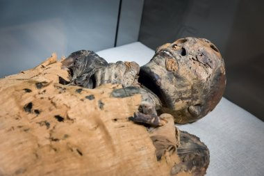 egyptian mummy lying in museum