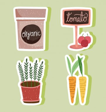 Gardening pack organic potted plant carrots and tomatos vector illustration icon