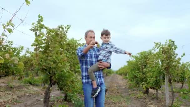 Glücklicher und charismatischer Opa und sein süßer, lächelnder Neffe spazieren gemeinsam durch den Weinberg Opa zeigt seinem Neffen die Weinlese