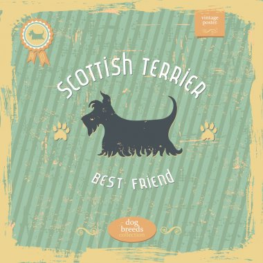 Hand drawn Scottish Terrier vintage typography poster