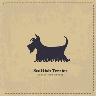 Vintage Scottish Terrier poster