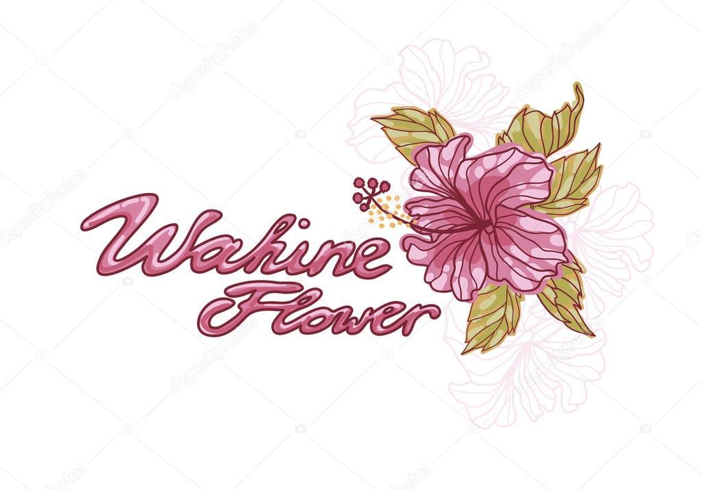 Hibiskus Blume Vektor-Bild — Stockvektor © AnnaReichel #79670096