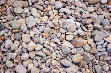 Dry round pebble stones.
