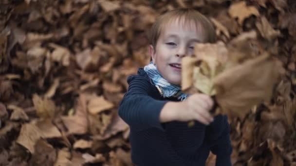 The boy stands against the yellow leaves and holds two large oak leaves