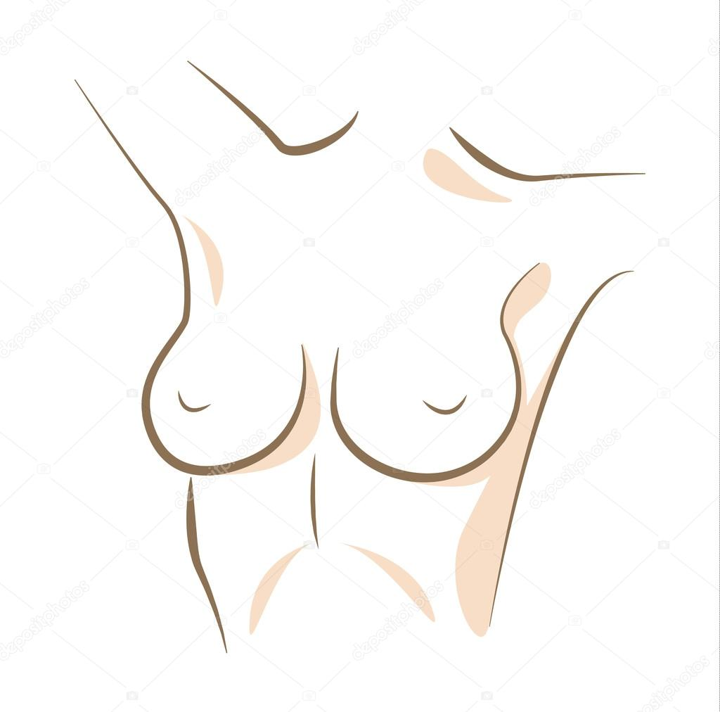 Close up woman breasts drawn in vector lines