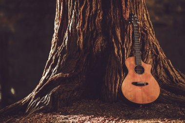 Acoustic Guitar and the Old Tree. Music Theme with Acoustic Guitar. stock vector