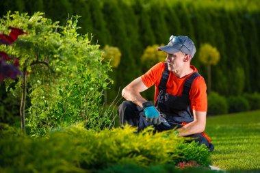 Creative Garden Designer