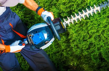 Trimming Time. Gardener with His Gasoline Hedge Trimmer in Action. stock vector