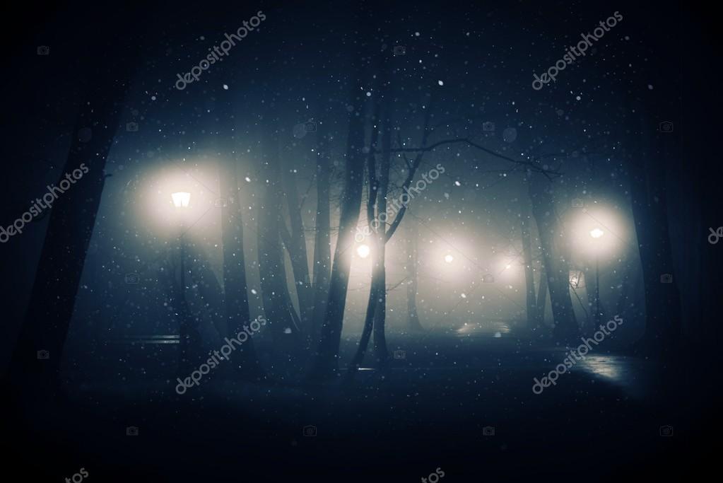 Snowy and Foggy Park