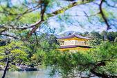 Fényképek Kinkakuji (arany pavilon) a régi japán arany vár, Kinka