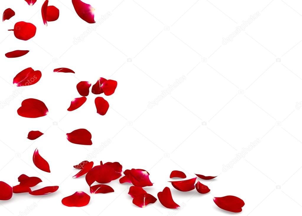 [RP atemporal] - Um mundo cinza Depositphotos_107636576-stock-photo-rose-petals-fall-to-the