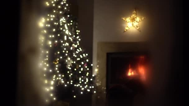 A nappali karácsonykor világít csak a tűz és a karácsonyfa. Otthoni kényelem és karácsonyi ünnepség koncepció