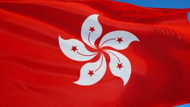 Hong Kong flag in slow motion seamlessly looped with alpha