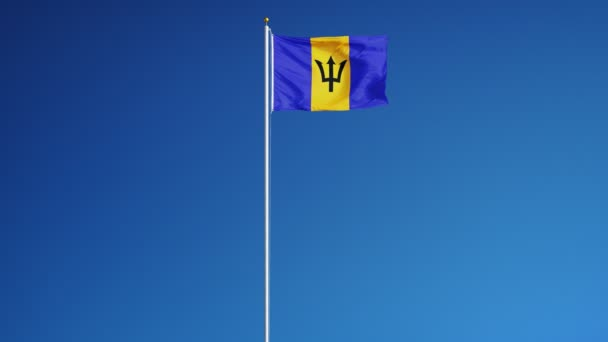 Barbados flag in slow motion seamlessly looped with alpha
