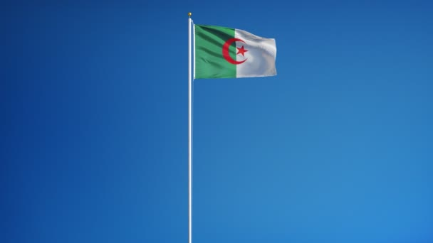 Algeria flag in slow motion seamlessly looped with alpha