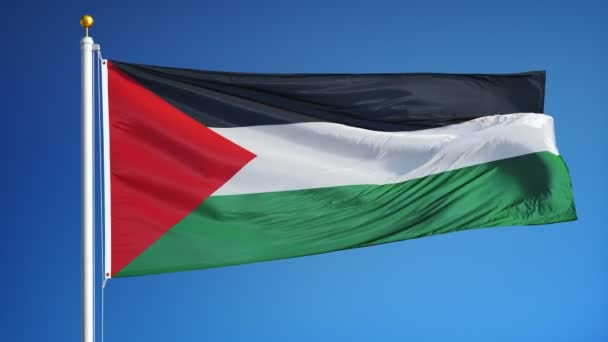 palestine flag in slow motion seamlessly looped with alpha
