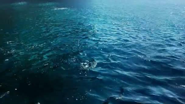 modré hluboké mořské vlny s pěnou pomalu plující na hladině vody