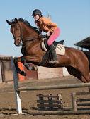 Fotografie Frau, die ihr Pferd zu befreien